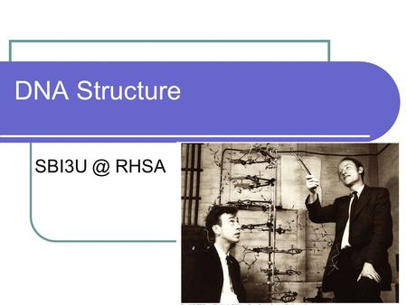 DNA Structure RHSA. What is DNA? In 1953 James Watson and Francis Crick developed a double helix model for DNA. DNA consists of 2 strands of nucleic.