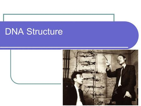 DNA Structure. What is DNA? In 1953 James Watson and Francis Crick developed a double helix model for DNA. DNA consists of 2 strands that twist around.