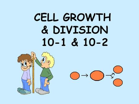 "CELL GROWTH & DIVISION 10-1 & 10-2. 2 Reasons why cells divide 1. _____________________ As cell grows bigger demand on DNA ""genetic library"" becomes too."