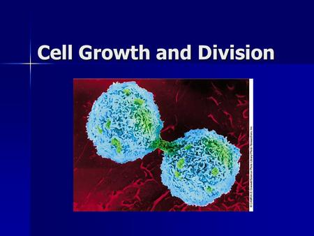 "Cell Growth and Division. Why do cells divide? DNA ""Overload"" DNA ""Overload"" –Not enough information for a big cell Exchanging Materials Exchanging Materials."