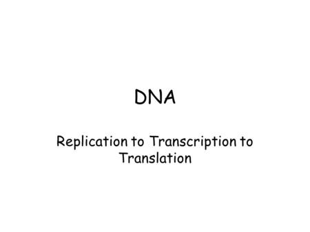 DNA Replication to Transcription to Translation. DNA Replication Replication : DNA in the chromosomes is copied in the nucleus. DNA molecule is unzipped.