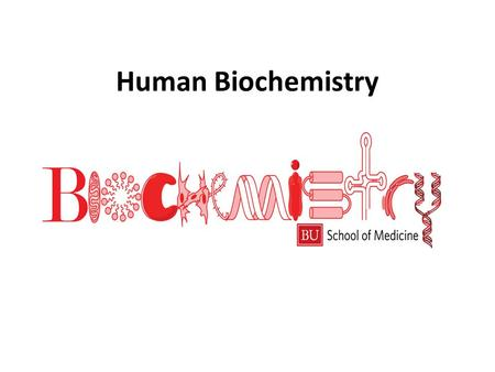 "Human Biochemistry Amino Acids and Proteins there are about 20 amino acids that occur naturally they are the basic ""building blocks"" of life/proteins."