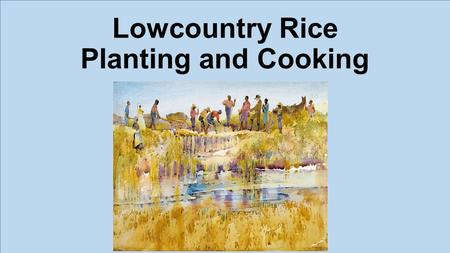 Lowcountry Rice Planting and Cooking. Origins:  Rice planting begins in SC in early 1700's.  Dr. Henry Woodward attempts to grow Madagascar seeds. 