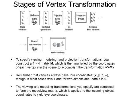 Stages of Vertex Transformation To specify viewing, modeling, and projection transformations, you construct a 4 × 4 matrix M, which is then multiplied.