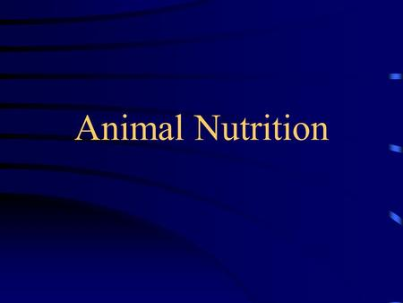 Animal Nutrition. Need for Nourishment body processes require the use of energy obtained from ingested food or stored fat animal must have food to store.