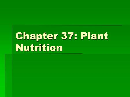 Chapter 37: Plant Nutrition. Where does mass come from?  Mineral nutrients-- essential elements  minimal contribution to mass  Water – 80-85% of herbaceous.