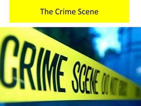 The Crime Scene. Vocabulary Make a vocabulary page in your notebook for each of the following terms: Primary Crime Scene Secondary Crime Scene Physical.