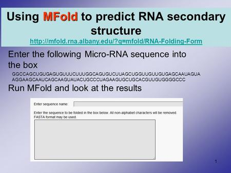 1 Enter the following Micro-RNA sequence into the box Run MFold and look at the results MFold Using MFold to predict RNA secondary structure