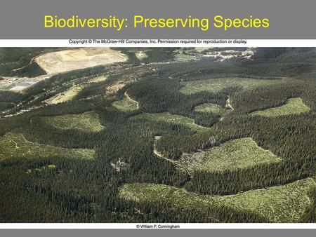 1 Biodiversity: Preserving Species. 2 What is Biodiversity? Species: organisms that breed in nature and produce fertile offspring Species Diversity 