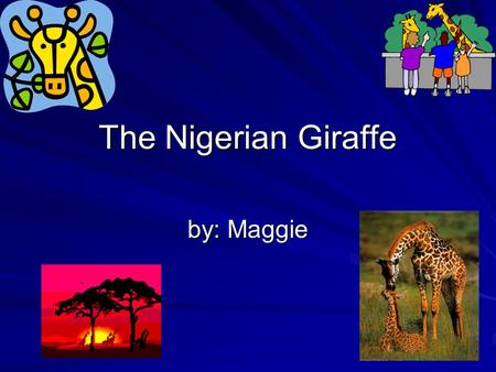 The Nigerian Giraffe by: Maggie Habitat  Southern Africa  Big herds  Biome grassland/ savanna.