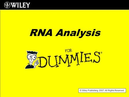 © Wiley Publishing. 2007. All Rights Reserved. RNA Analysis.