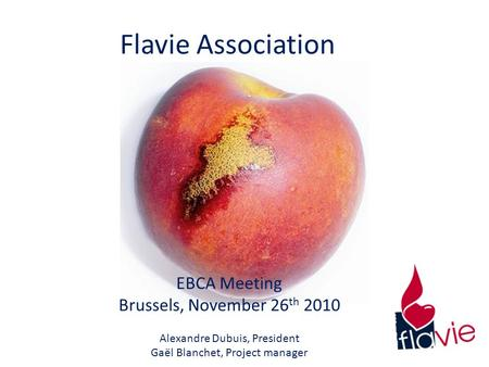 Flavie Association EBCA Meeting Brussels, November 26 th 2010 Alexandre Dubuis, President Gaël Blanchet, Project manager.
