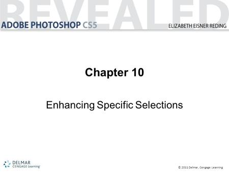 © 2011 Delmar, Cengage Learning Chapter 10 Enhancing Specific Selections.