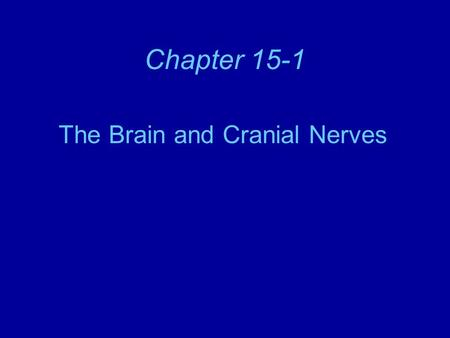 Chapter 15-1 The Brain and Cranial Nerves. The Brain The average male adult brain weighs about 3.5 lbs (1590 gms). Composed of 3 divisions: –Cerebrum.