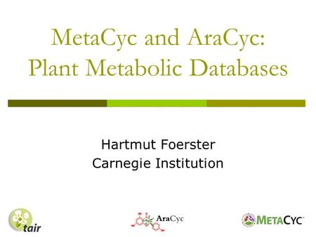 MetaCyc and AraCyc: Plant Metabolic Databases Hartmut Foerster Carnegie Institution.