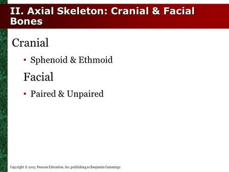 Copyright © 2003 Pearson Education, Inc. publishing as Benjamin Cummings II. Axial Skeleton: Cranial & Facial Bones Cranial Sphenoid & Ethmoid Facial Paired.