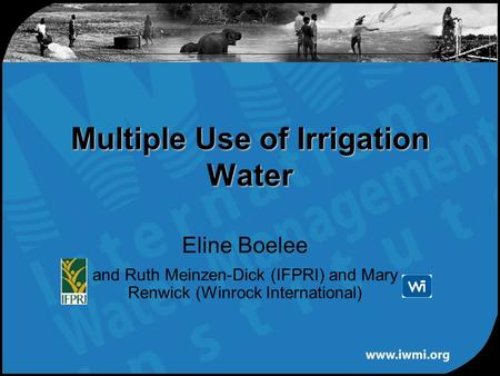Eline Boelee and Ruth Meinzen-Dick (IFPRI) and Mary Renwick (Winrock International) Multiple Use of Irrigation Water.
