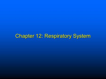 Chapter 12: Respiratory System
