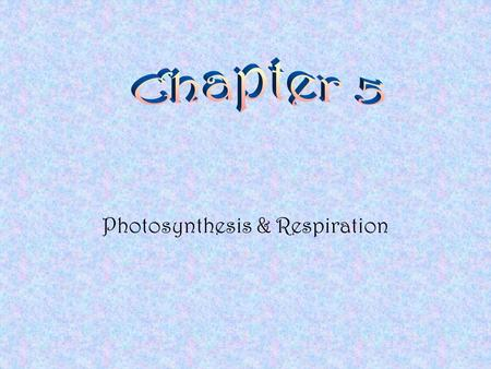 Photosynthesis & Respiration Chapter Sections Section 1 - Energy and Living Things Section 2 - Photosynthesis Section 3 - Cellular Respiration.