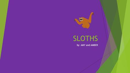 SLOTHS by AMY and AMBER. FACTS  Known for being a sedentary tree-dwelling mammal, the sloth rarely moves at all spending much of its day hanging upside-