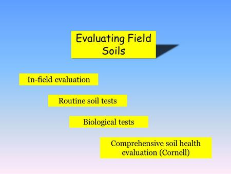 Evaluating Field Soils In-field evaluation Routine soil tests Biological tests Comprehensive soil health evaluation (Cornell)