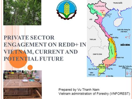 PRIVATE SECTOR ENGAGEMENT ON REDD+ IN VIETNAM, CURRENT AND POTENTIAL FUTURE Prepared by Vu Thanh Nam Vietnam administration of Forestry (VNFOREST)