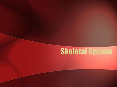 Skeletal System. Divisions of the Skeleton Axial skeleton consists of 74 bones that form the upright axis of the body and 6 tiny middle ear bones Appendicular.