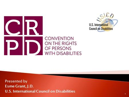 Presented by Esme Grant, J.D. U.S. International Council on Disabilities 1.