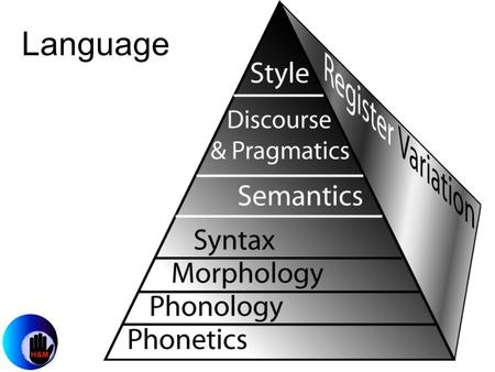 Language. Phonetics is the study of how elements of language are physically produced.
