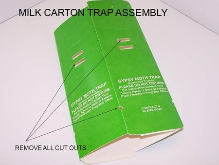 REMOVE ALL CUT OUTS MILK CARTON TRAP ASSEMBLY. STAPLE BOTTOM OF TRAP.