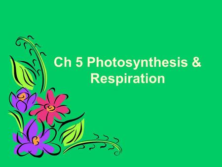 Ch 5 Photosynthesis & Respiration. What is Photosynthesis? The process of photosynthesis is a chemical reaction. It is the most important chemical reaction.