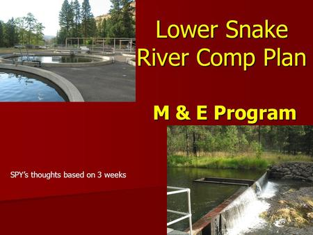 Lower Snake River Comp Plan M & E Program SPY's thoughts based on 3 weeks.