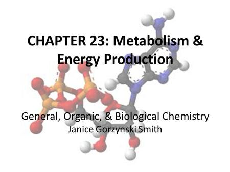 CHAPTER 23: Metabolism & Energy Production