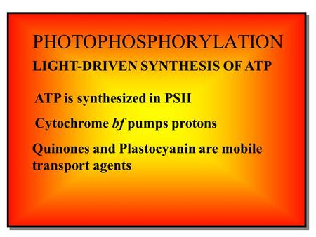 PHOTOPHOSPHORYLATION LIGHT-DRIVEN SYNTHESIS OF ATP ATP is synthesized in PSII Cytochrome bf pumps protons Quinones and Plastocyanin are mobile transport.