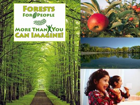 Forests For People More Than You Can Imagine! Franklin Soil and Water Conservation District and The National Association of Conservation Districts (NACD)
