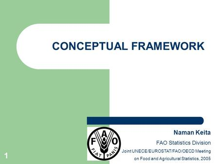1 CONCEPTUAL FRAMEWORK Naman Keita FAO Statistics Division Joint UNECE/EUROSTAT/FAO/OECD Meeting on Food and Agricultural Statistics, 2005.