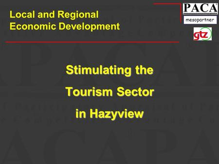 Mesopartner Stimulating the Tourism Sector in Hazyview Local and Regional Economic Development.