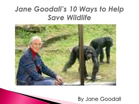 By Jane Goodall. Rate and review the vocabulary words independently cautioushabitsmarvelous apologizedavoidobserve For this lesson you will read Jane.