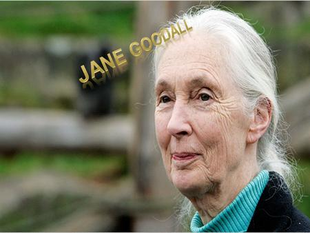 Jane Goodall was born in 1934. Jane and her mother moved to the country of Tanzania in Africa. They lived with chimpanzees, in the Gombe forest. At first,