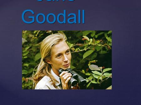 { Jane Goodall Jane Goodall. Introduction Introduction Jane Goodall was born in England in 1934 on April 3. Her job was looking after animals. So she.
