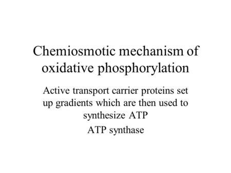 Chemiosmotic mechanism of oxidative phosphorylation Active transport carrier proteins set up gradients which are then used to synthesize ATP ATP synthase.