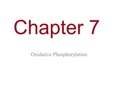 Chapter 7 Oxidative Phosphorylation. You Must Know How electrons from NADH and FADH 2 are passed to a series of electron acceptors to produce ATP by chemiosmosis.