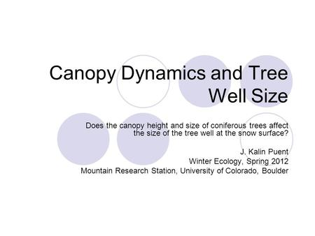 Canopy Dynamics and Tree Well Size Does the canopy height and size of coniferous trees affect the size of the tree well at the snow surface? J. Kalin Puent.