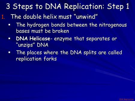 "3 Steps to DNA Replication: Step 1 1. The double helix must ""unwind""  The hydrogen bonds between the nitrogenous bases must be broken  DNA Helicase-"