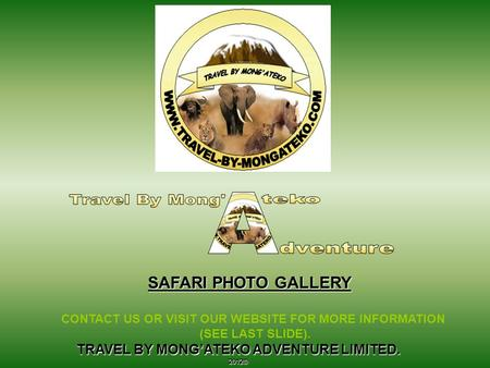 TRAVEL BY MONG'ATEKO ADVENTURE LIMITED. 2012© SAFARI PHOTO GALLERY CONTACT US OR VISIT OUR WEBSITE FOR MORE INFORMATION (SEE LAST SLIDE).