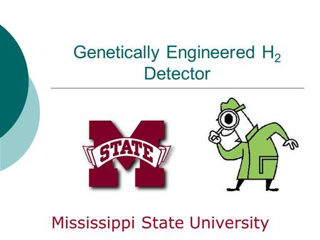 Genetically Engineered H 2 Detector Mississippi State University.