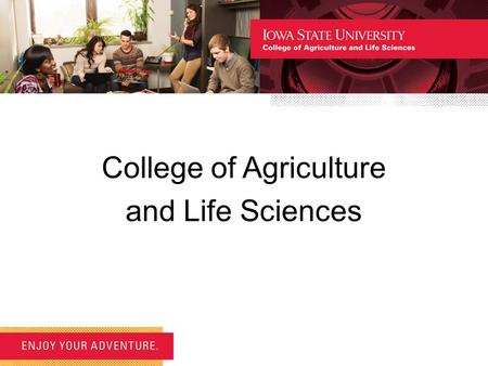 College of Agriculture and Life Sciences. Overview Orientation consists of a university segment, a college segment and a departmental segment. In this,