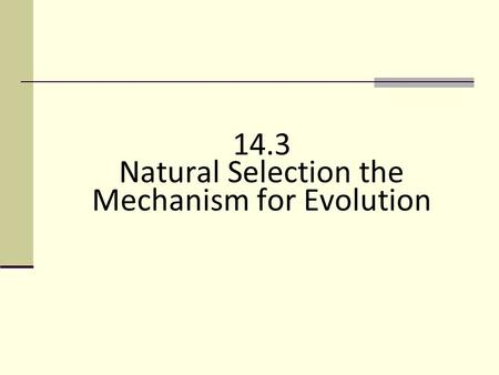 14.3 Natural Selection the Mechanism for Evolution 14.3.