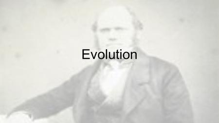 Evolution. Breaking Down the Definitions Honors 1.Evolution 2.Natural selection 3.Adaptation 4.Fitness 5.Convergent evolution 6.Divergent evolution 7.Adaptive.