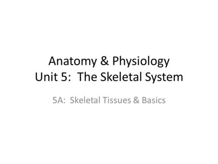 Anatomy & Physiology Unit 5: The Skeletal System 5A: Skeletal Tissues & Basics.